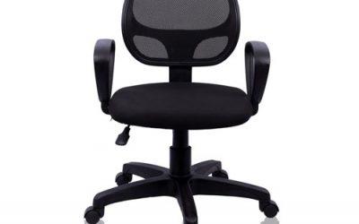 Task Low Back Ergonomic Chair